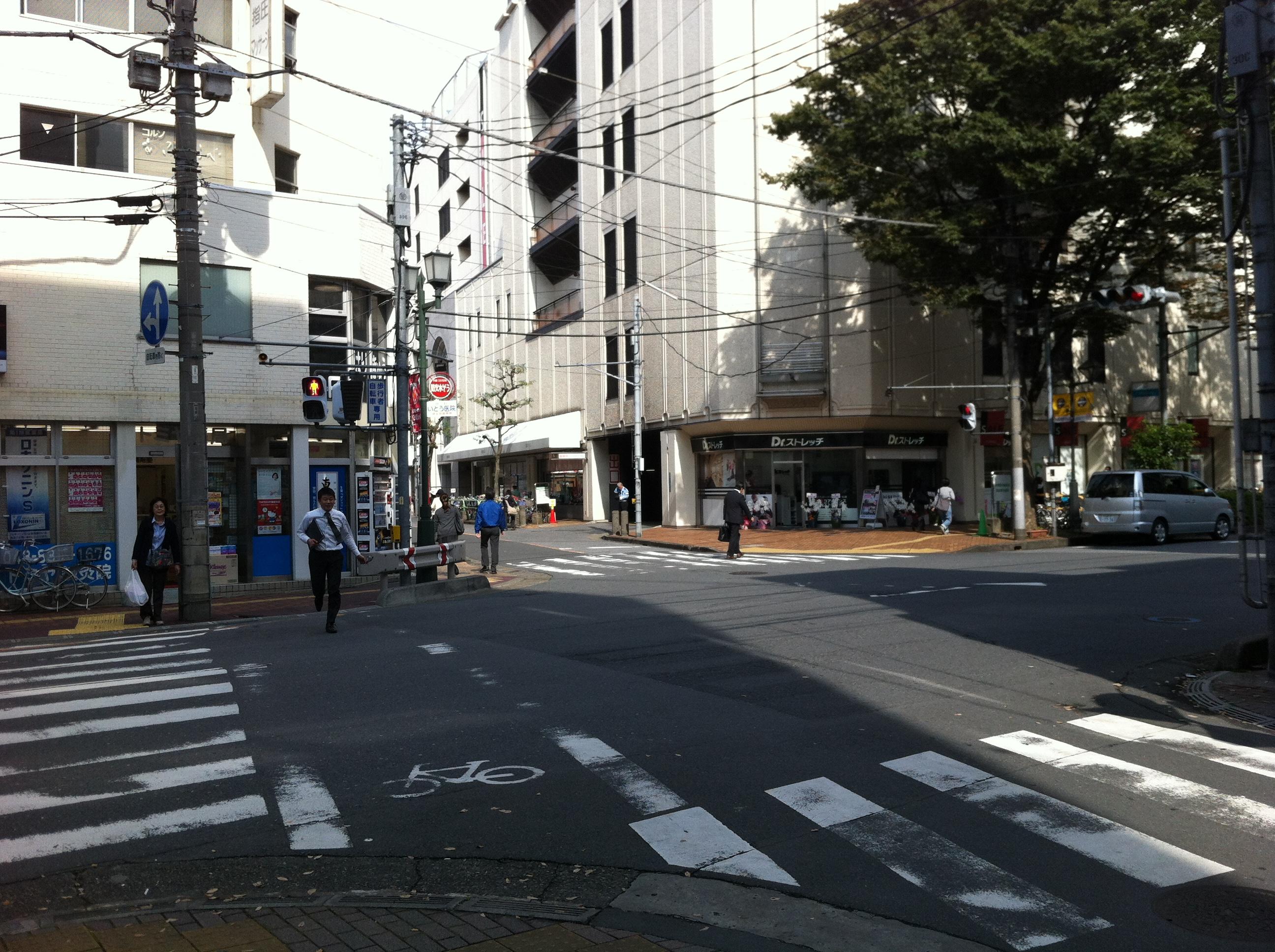 http://www.washin-optical.co.jp/blog/kenchodori/IMG_1154.JPG