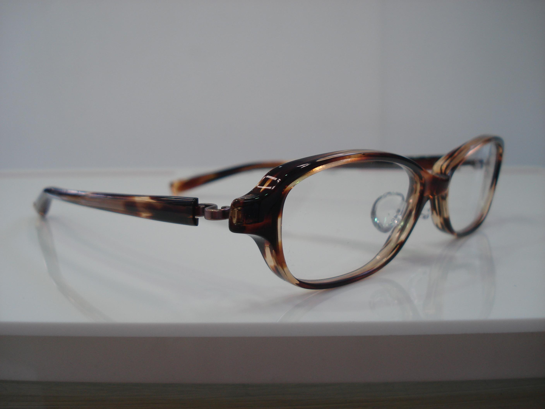 http://www.washin-optical.co.jp/blog/kenchodori/NP-76%20004.jpg