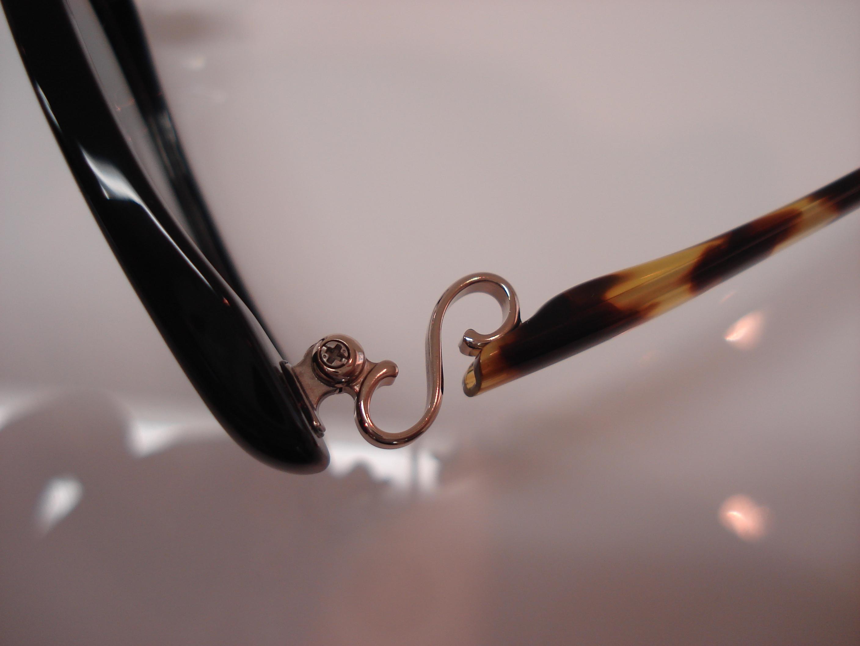 http://www.washin-optical.co.jp/blog/kenchodori/NP77%20009.jpg