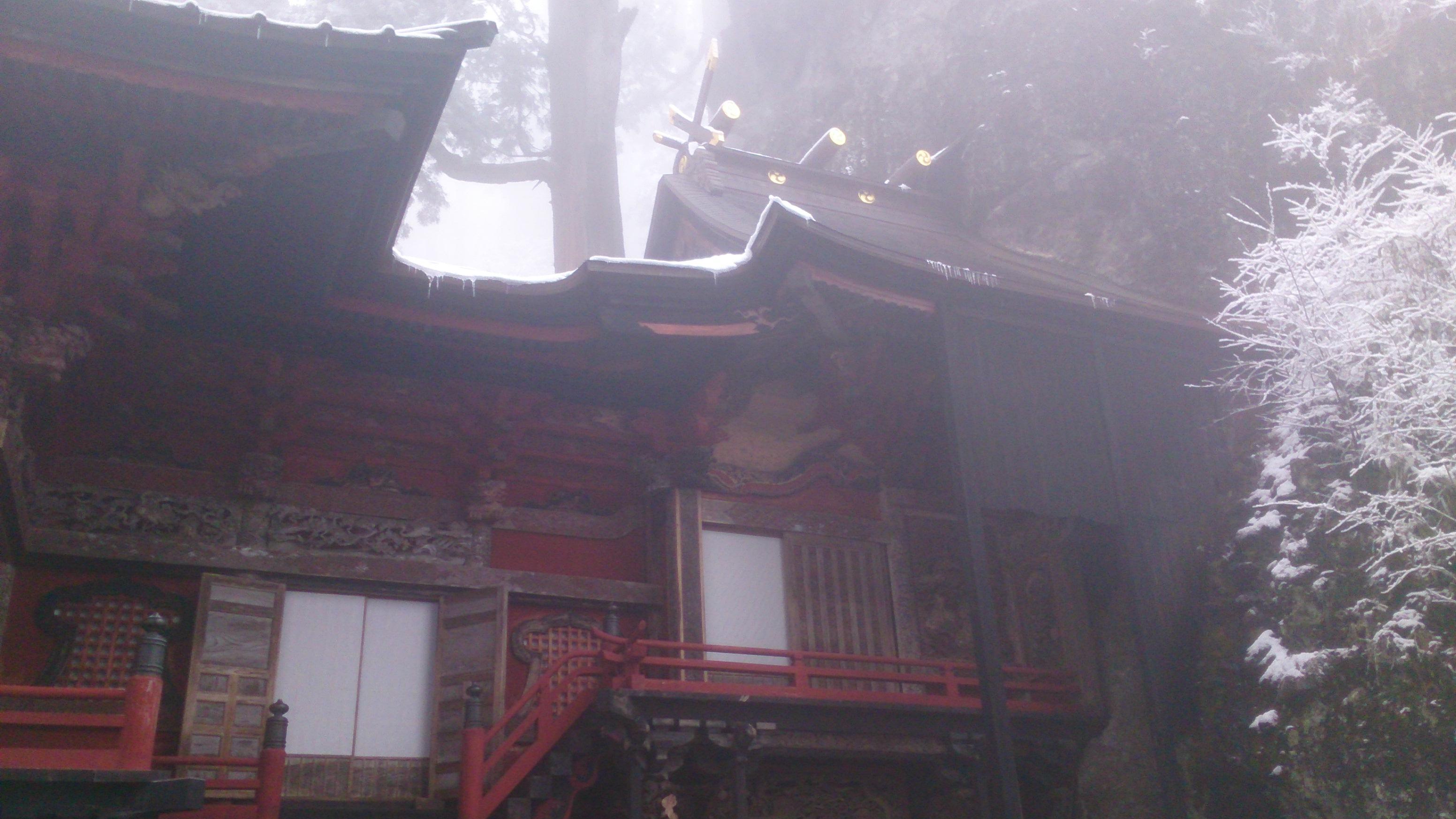 http://www.washin-optical.co.jp/blog/ladies/DSC_0696.jpg