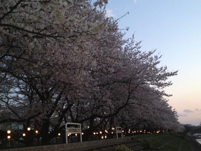 http://www.washin-optical.co.jp/blog/ladies/IMG_6033.jpg