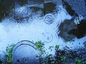 雨の日.jpg